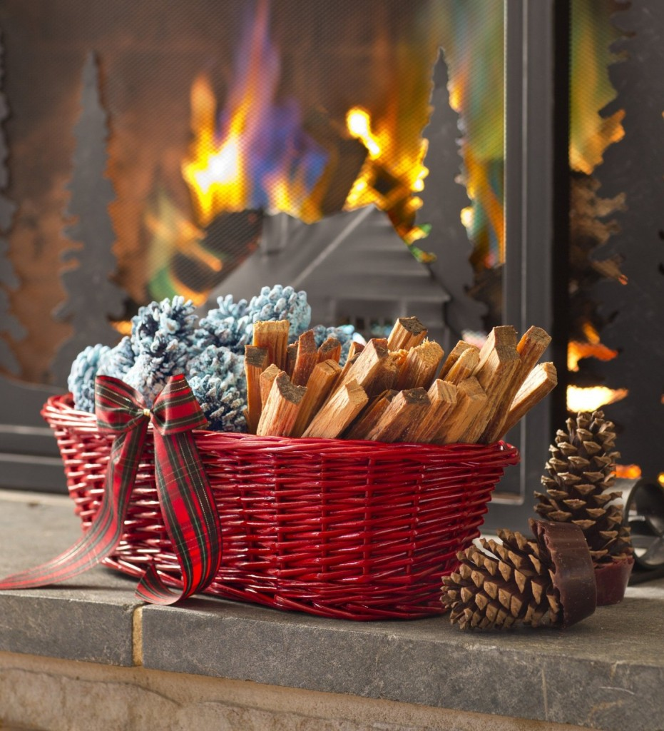 Color Burning Pine Cones for the Fireplace