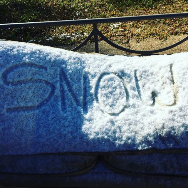 Woke up to RARE SNOW in Florida!!! Kids did theirhellip