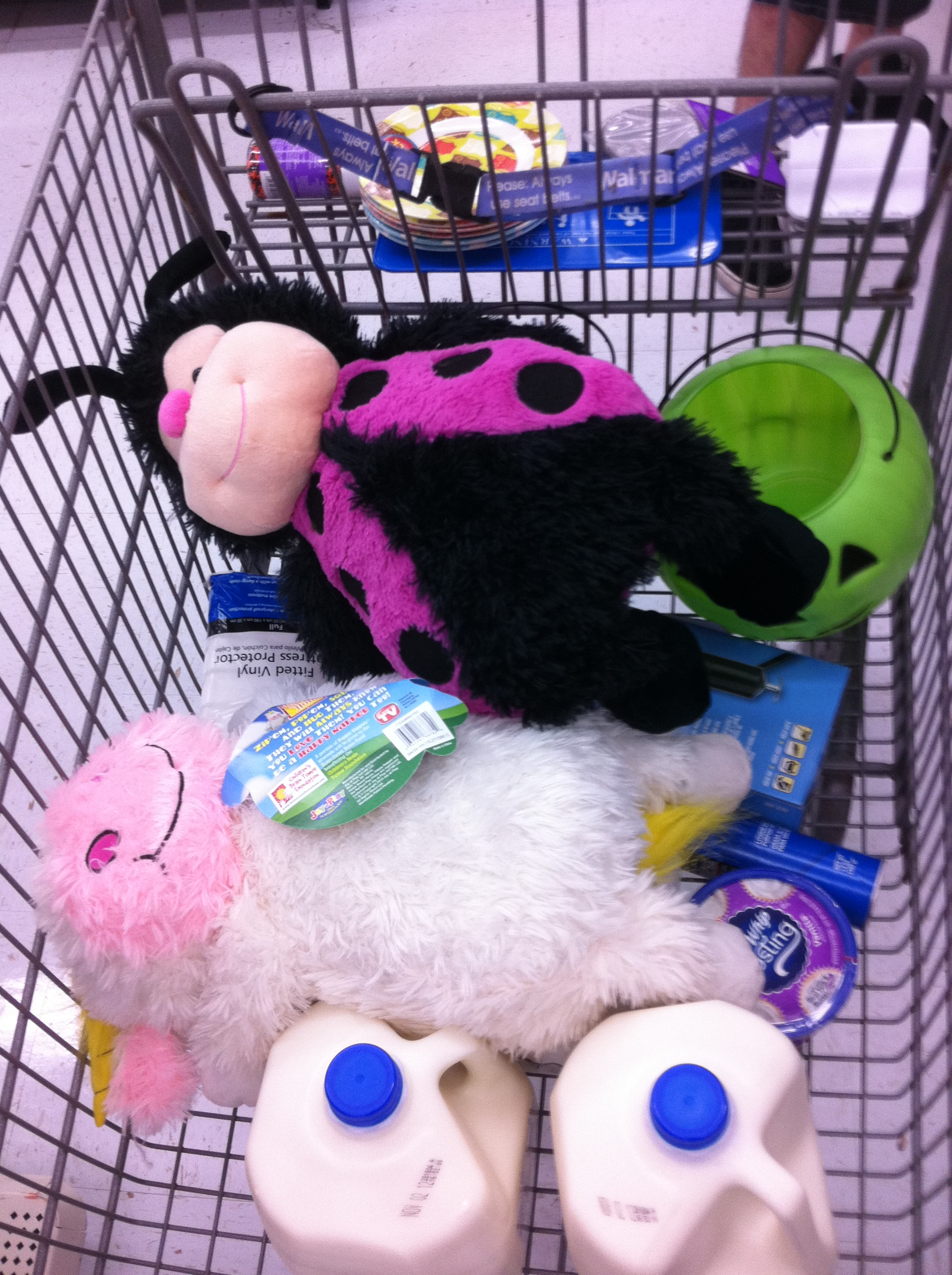 Shopping for Cool Whip Frosting