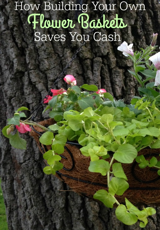 How Building Your Own Hanging Baskets Saves You Cash